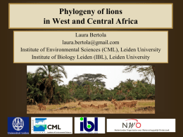 in West and Central Africa - Large Carnivore Initiative West