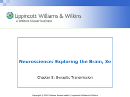 Chapter 05: Synaptic Transmission