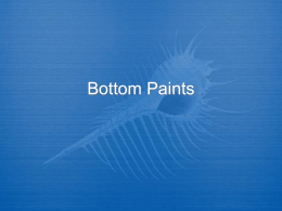 Bottom Paints