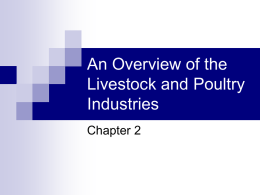 An Overview of the Livestock and Poultry Industries