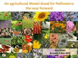 An agricultural Model Good for Pollinators: the way forward